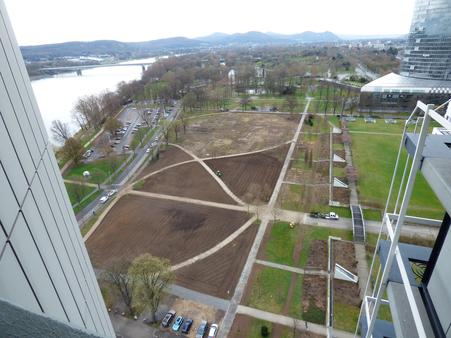 Rasenarbeiten Rheinaue